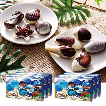 モルディブお土産 | モルディブ シーシェルチョコレート ドルフィン紙袋付き 6箱セット【174041】
