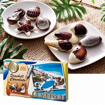 メキシコ・カリブお土産 | カリビアンシーシェルチョコレート 1箱【182115】