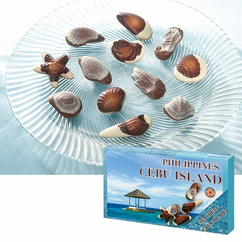 フィリピンお土産 | セブ シーシェルチョコレート 1箱【186114】