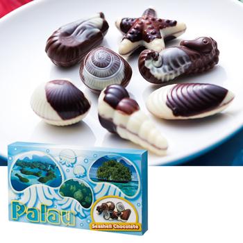 パラオお土産 | パラオ シーシェルチョコレート 1箱【184072】