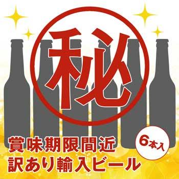 訳あり 輸入ビールアソート 6本セット【R06110】